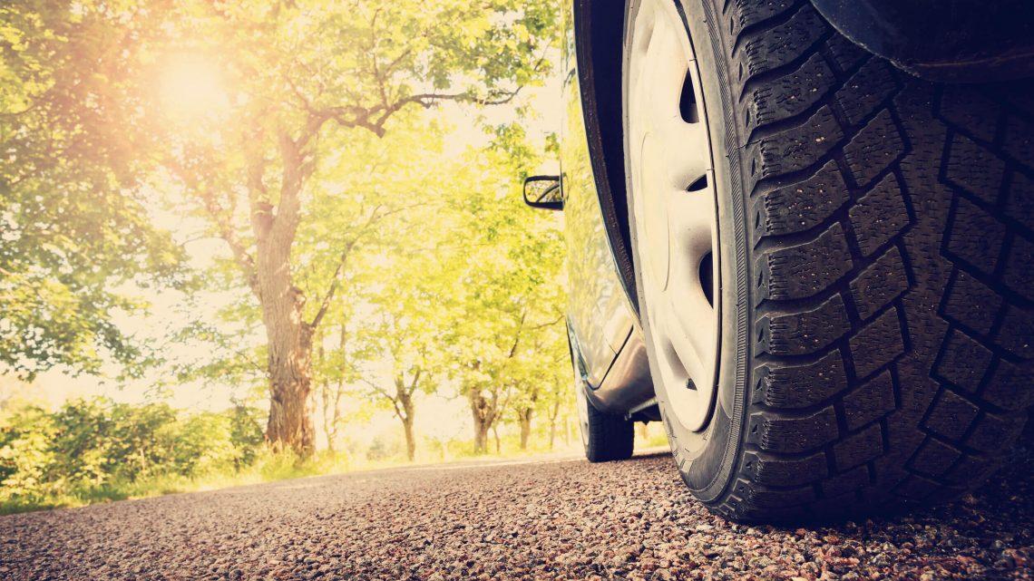 Assurance auto: collision avec un animal