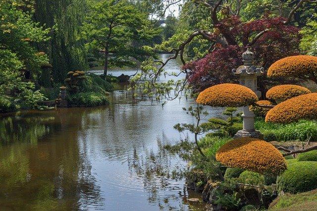 Création et entretien de jardin Pau